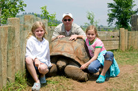 120 year old tortoise